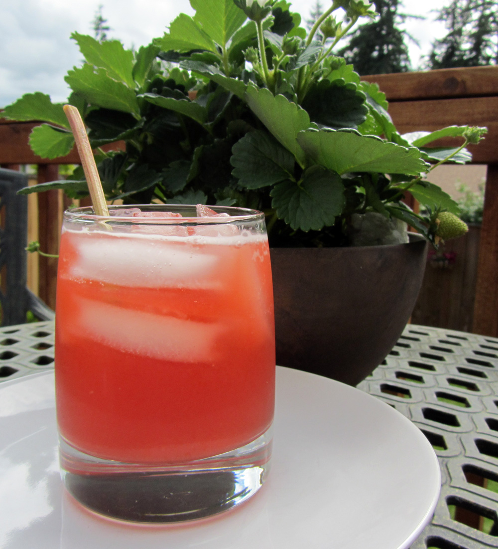 Chips That Pass in the Night: Strawberry Rhubarb Soda & Sauce