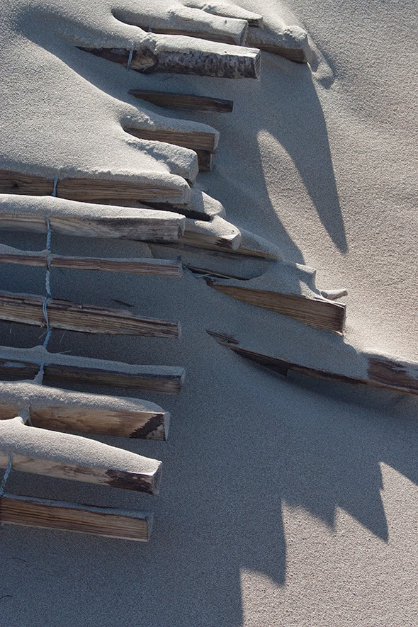 wooden poles in sand