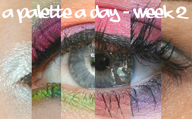 A palette a day challenge