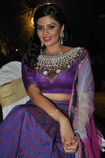 Actress Srimukhi Pictures in Half Saree at Dhakshmi Talupu Tadithey Audio Launch   (10)