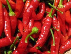 Pimenta malagueta para aumentar a longevidade