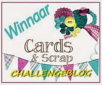 Winnaar Cards And Scrap