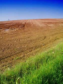 ... minerais e matéria orgânica líquida solução do solo e gasosa ar