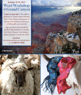 felting workshop at grand canyon