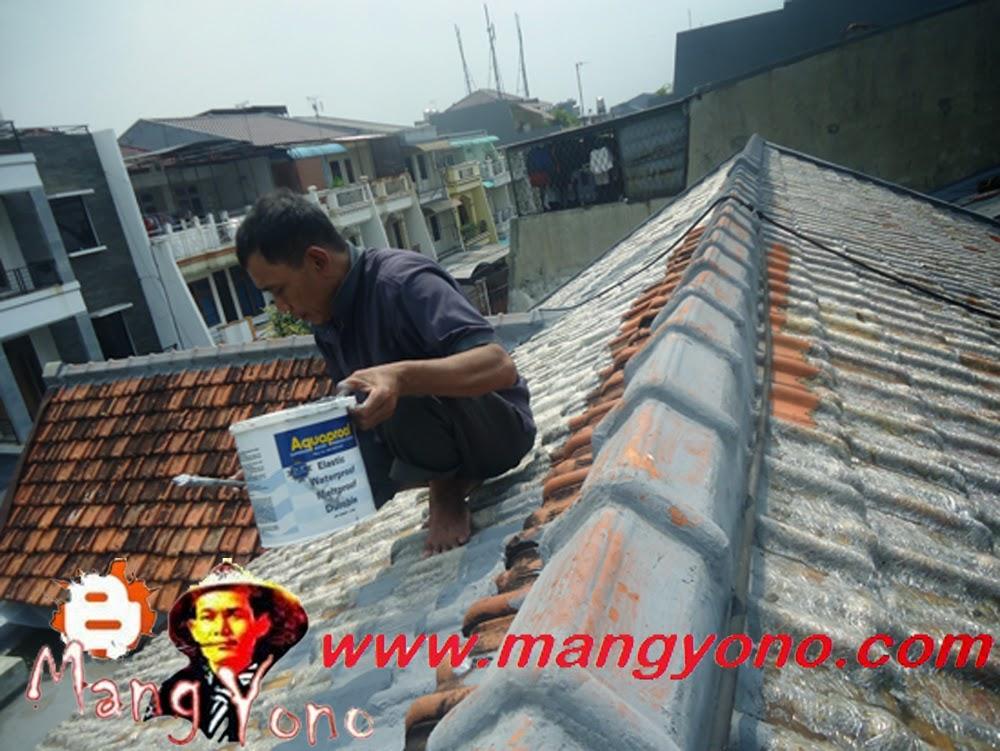 Cara Mengatasi Atap Rumah Yang Bocor, Rembes