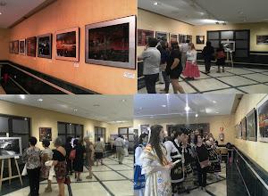 """EXPOSICIONES DE PINTURA """"UN VIAJE PERSONAL 2013"""""""