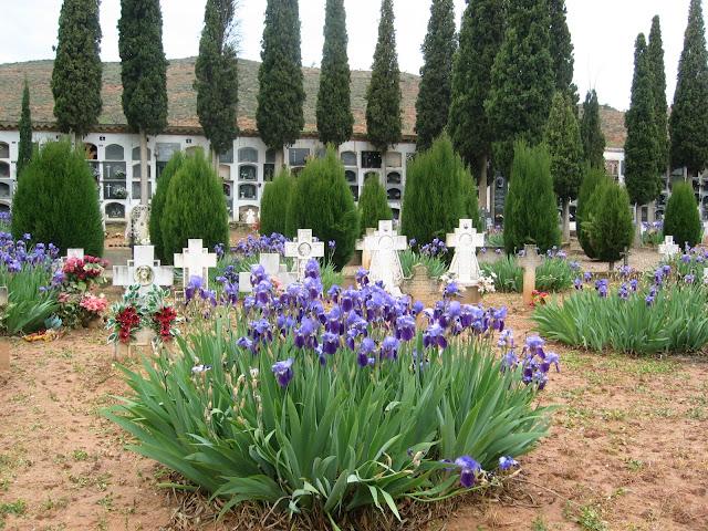 cementerio-españa