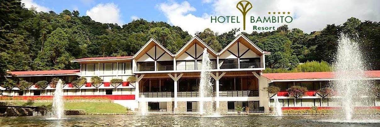 Hotel bambito paquetes for Paquete familiar en un hotel