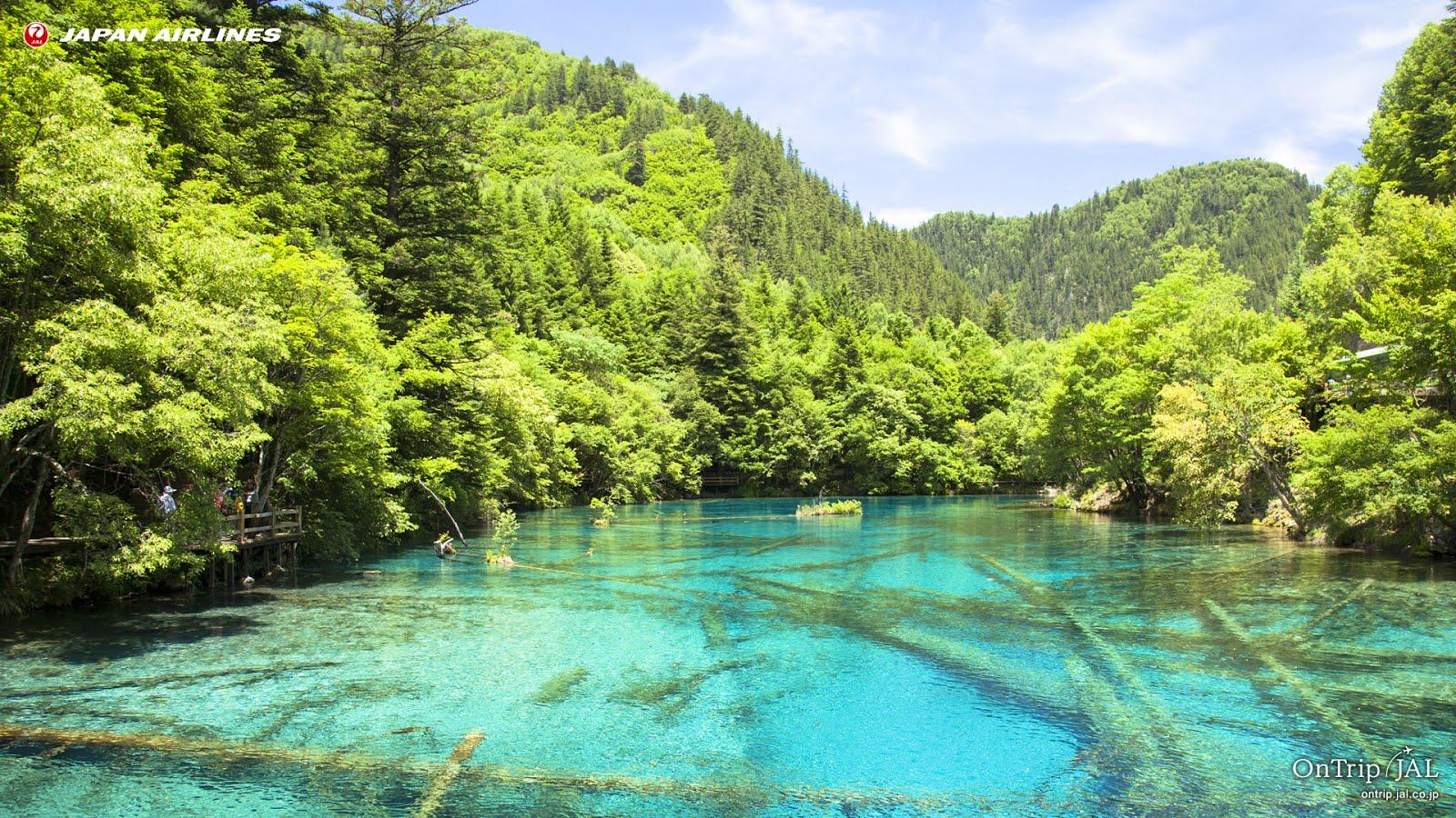 @ JAL旅プラスなび⊙絶景-景色 每月更新ダウンロード ~ 海外 幽玄の美・九寨溝