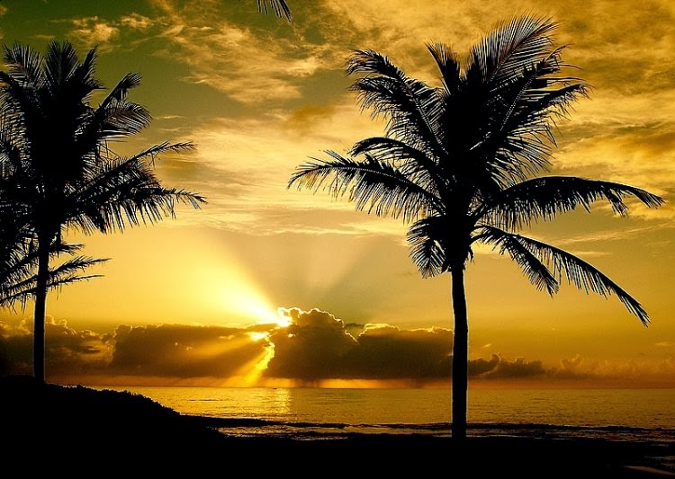 sol nascendo praia