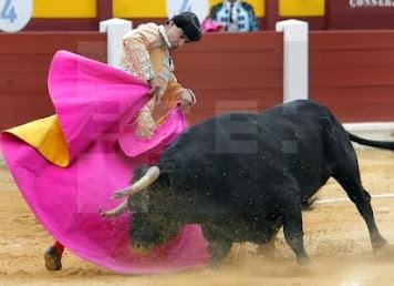 Jesulin Oviedo toros