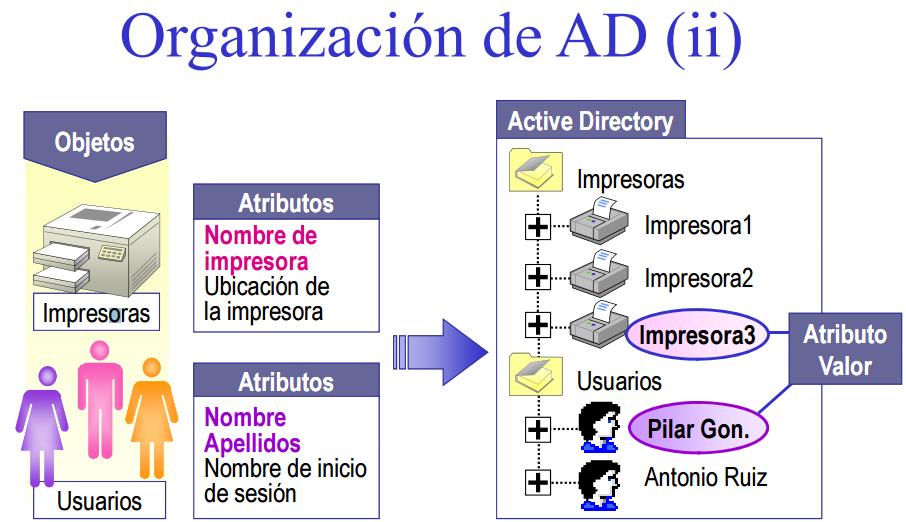 Tareas de Excel: ACTIVE DIRECTORY