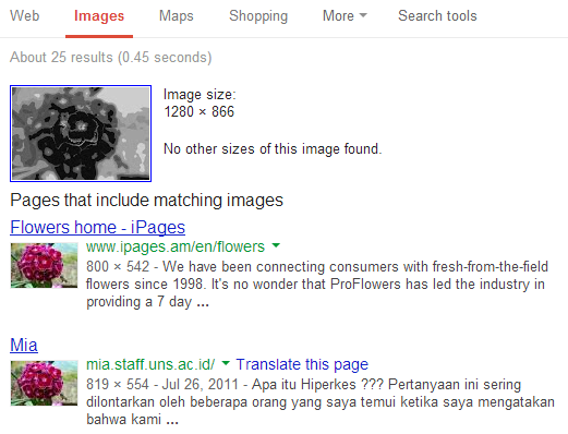 how to reverse search an image on google