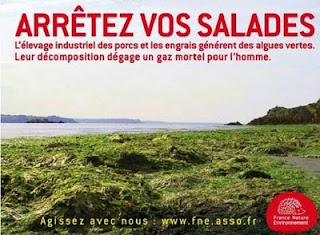 http://4.bp.blogspot.com/-0MyaeAnO7Q0/TWPmfba-2HI/AAAAAAAABXU/aqBeuDCAp_c/s320/algues+vertes+affiche+salade-1.jpg