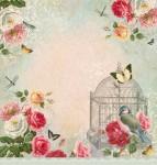 http://kolorowyjarmark.pl/pl/p/Papier-30x30-Dreamgarden-3/3335