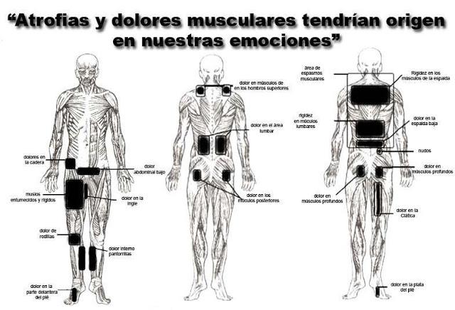 Los dolores en la espalda a la osteocondrosis que curar