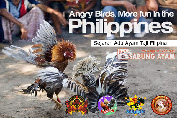 Sejarah Adu Ayam Taji Filipina