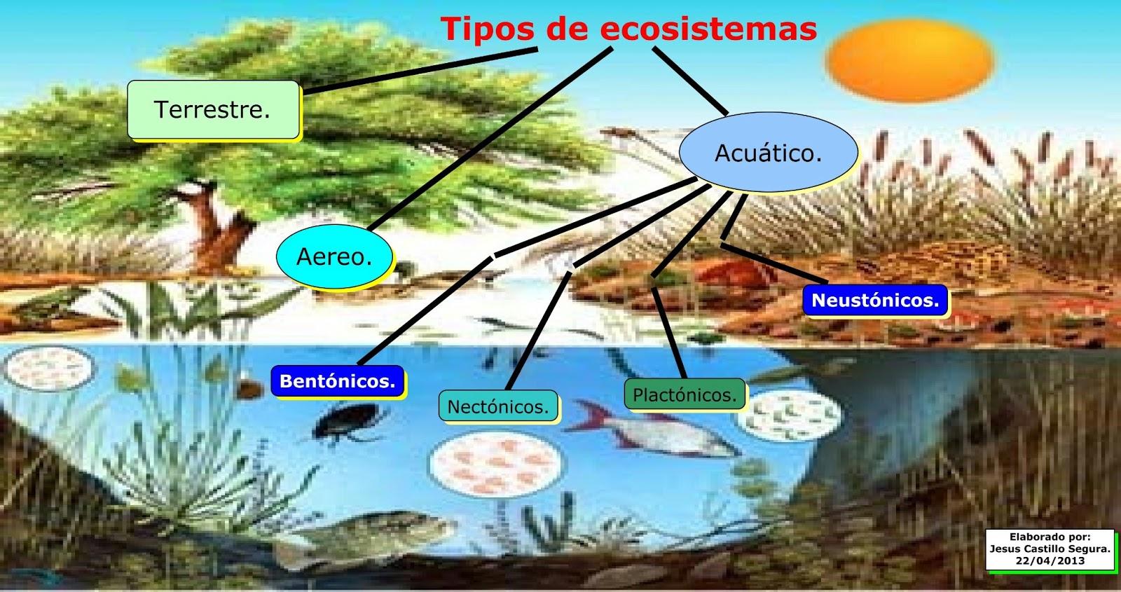 Recursos Didácticos para Enseñanza de las Ciencias : TIPOS DE ...