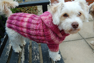 PATTERNS FOR DOGS COATS | Browse Patterns