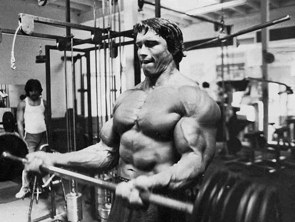 http://4.bp.blogspot.com/-0NzlX6Z6cIQ/TdQI7kADwgI/AAAAAAAAAZk/vWmwb3yPD_A/s1600/Arnold-Schwarzenegger-Pics.jpg