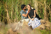 Kavvintha movie photos gallery-thumbnail-16