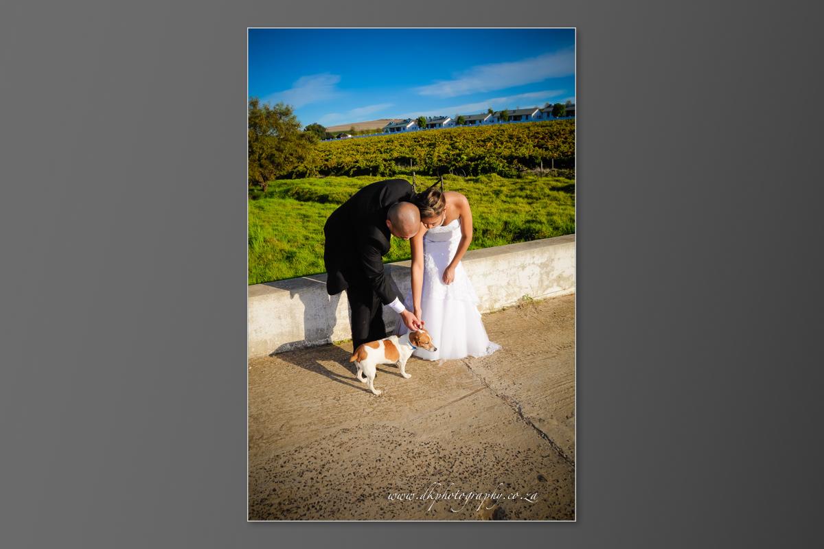 DK Photography DVD+slideshow-358 Cleo & Heinrich's Wedding in D'Aria, Durbanville  Cape Town Wedding photographer