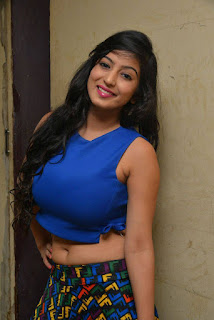 Actress Vaibhavi Joshi  Pictures at Tiger Sultan Teaser Launch  252833)