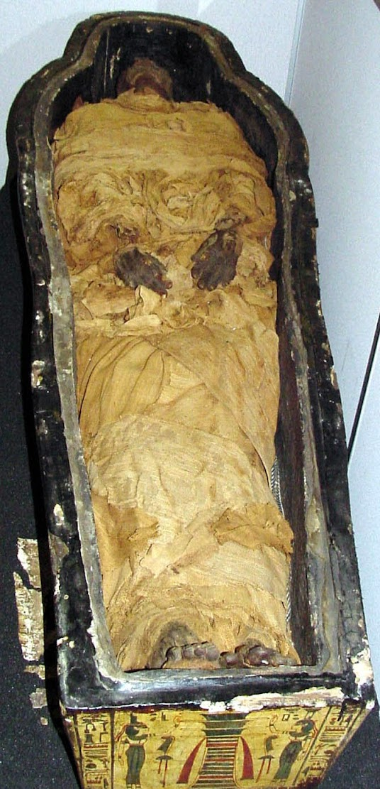 Embalming study 'rewrites' key chapter in Egypt's history
