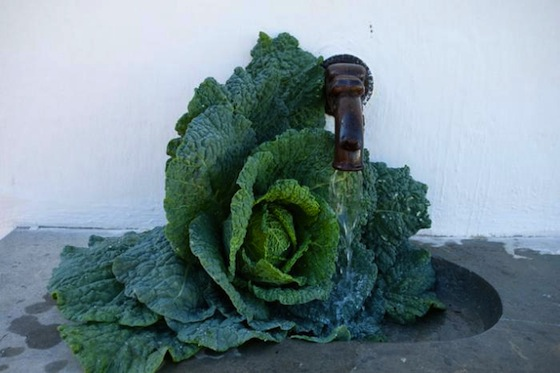 Kale as Flower Arrangement