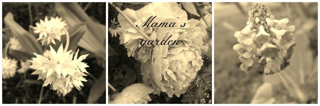 Mama`s garden