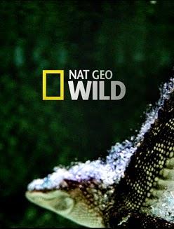 Nat Geo Wild: A Peninsula de Kamchatka
