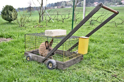 Rabbit Lawnmowr