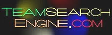 Team Search Engine logo 2010