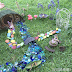 Fairy Garden Play | you clever monkey