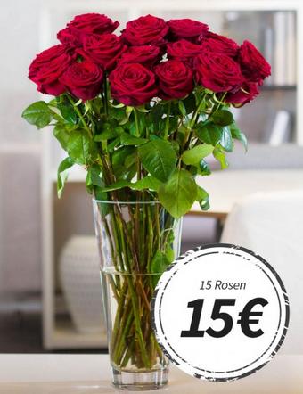 15 langstielige rote rosen 70 cm f r nur 19 90 inkl versand sparfuchs 39 schn ppchen blog. Black Bedroom Furniture Sets. Home Design Ideas