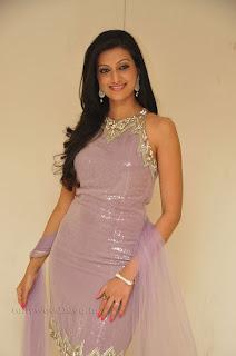 Hasha Nandini pos at cmr aashadam event 011.jpg