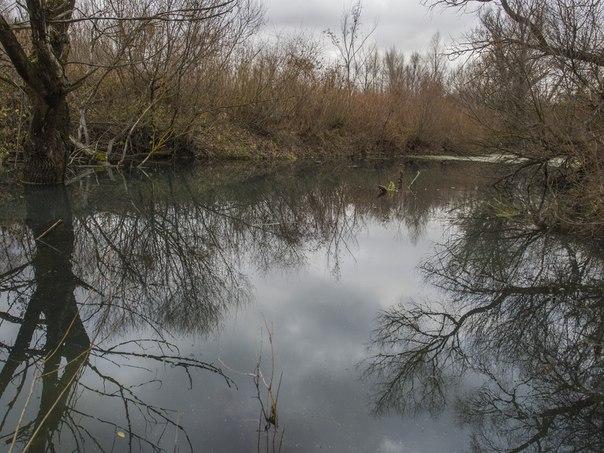 Рыбалка на микро речке
