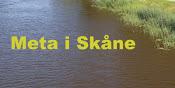 Meta i Skåne