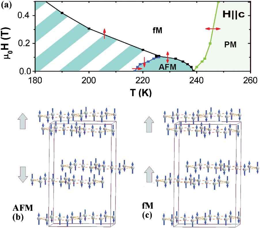 Nanomagn: e037206 (application/pdf Object)