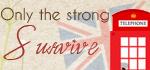 http://onlythestrong-survive.blogspot.com.br/