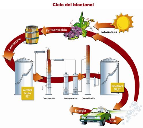 Risultato immagine per bioetanolo biocarburanti