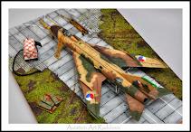 """""""Su-7 BMK"""" 1/48"""