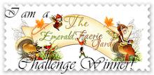 2011 Challenges