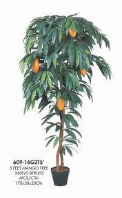Gambar pohon mangga, bagian-bagian tanaman mangga dai akar batang daun hingga buah