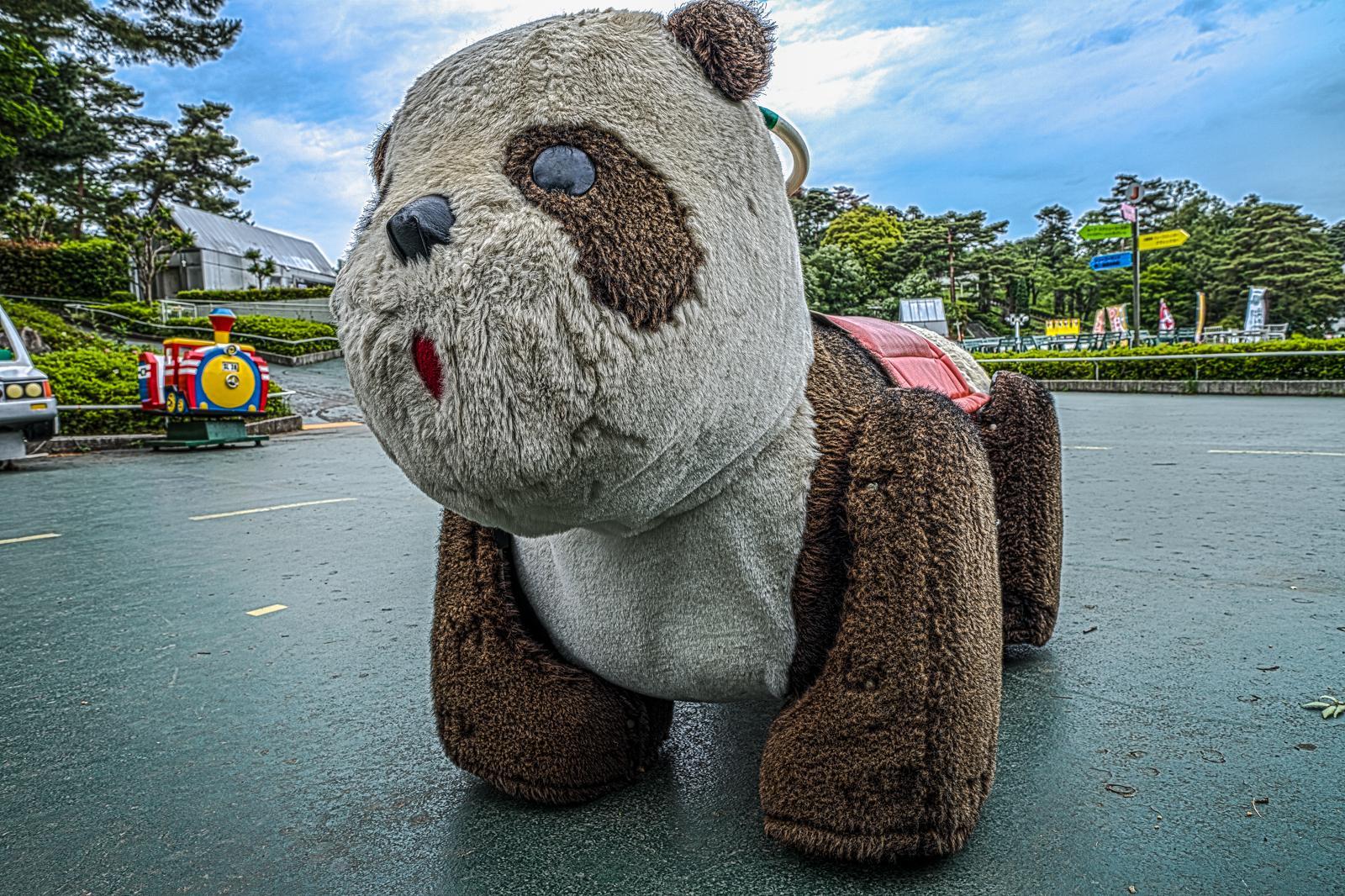 コイン式の熊の乗り物の写真 HDR