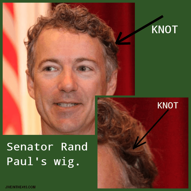 Senator Rand Paul's (R-KY) photo clearly shows a knot where his wig is attached to his head.