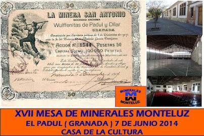 XV MESA DE MINERALES MONTELUZ