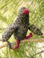 http://www.berroco.com/sites/default/files/downloads/patterns/Berroco_FreePattern_Partridge-Phil.pdf