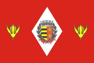 Bandeira de Cedral