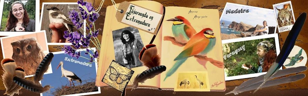 Pajareando en Extremadura (y más)